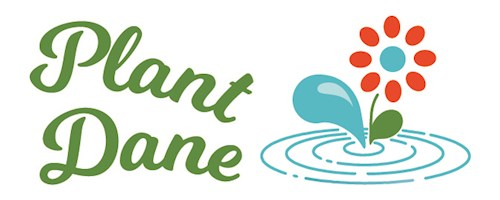 Sign Up for Plant Dane Rain Garden Workshop - Mar. 16th!
