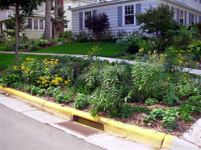 Fresh Coast Guardians Virtual Rain Garden Workshop March 13th